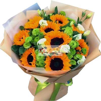 小新的花温暖陪您/9支向日葵