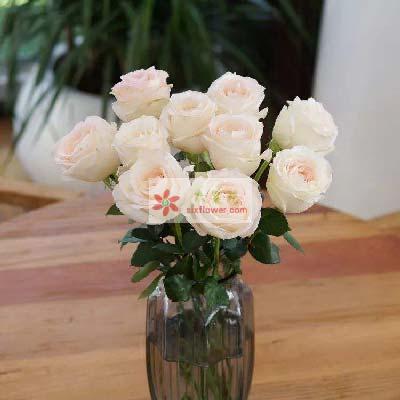 仁和花卉梦里梦外都是你/11支香槟玫瑰瓶插花