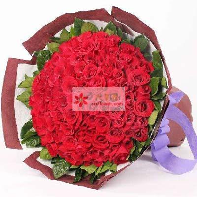 上海兰兰花店77支红玫瑰/永远爱你不停歇