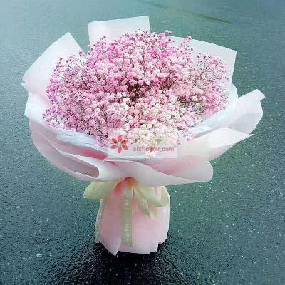 崇明县鲜花店陪我到永远/粉色满天星