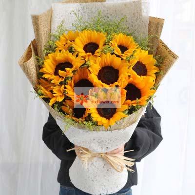 10朵向日葵,让幸福永远对你微笑上海兰兰花店