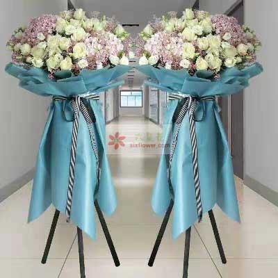 20朵白玫瑰,3朵粉色绣球花,六六大顺生意庄河晶晶花艺