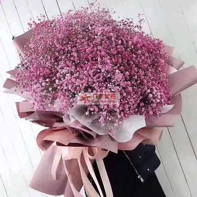 粉色满天星2扎,你就是我一见钟情的那个人花蜜花艺鲜花店