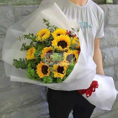 9朵向日葵,祝您一生平安鄞州区友好鲜花