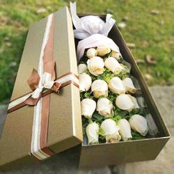 20朵香槟玫瑰,我永远在支持你