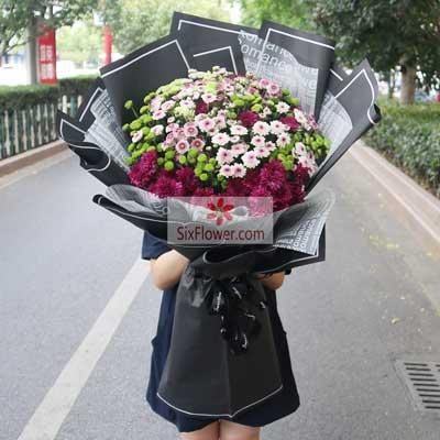 各色小雏菊,轰轰烈烈玫瑰花园(鼓浪路店)