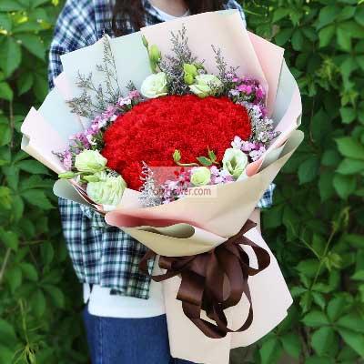 广州1号花店48朵红色康乃馨,永远幸福