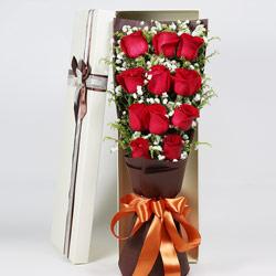 11朵红玫瑰,礼盒装,最快乐的时光