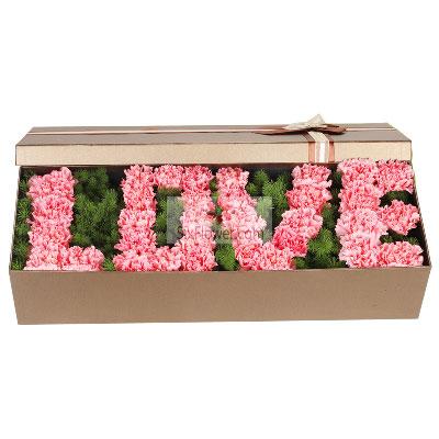 南京花卉33朵粉色康乃馨,礼盒装,您是我的榜样