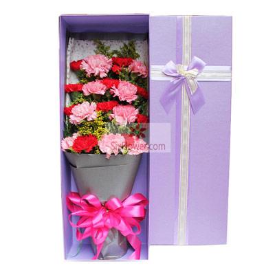 19朵康乃馨,礼盒装,希望你一生幸福快乐黄江镇宝宝花店