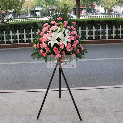 四月芳菲花艺馆30朵粉色康乃馨,三脚架开业花篮,永远向事业的高峰攀登