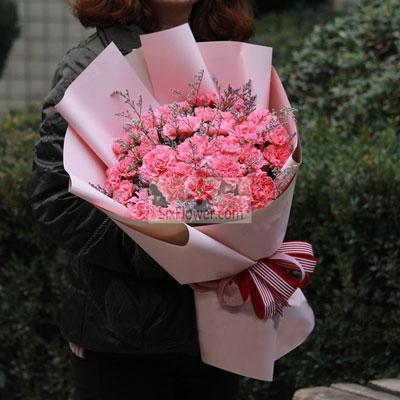 蒲江花房30朵粉色康乃馨,永远美丽