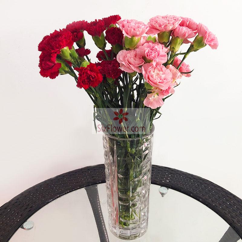 20朵康乃馨,瓶插花,好运围绕在您身边南岸区常春藤花艺
