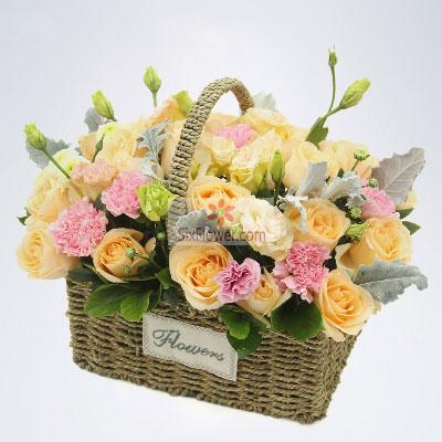 28朵香槟玫瑰,6朵粉色康乃馨,父爱小新的花