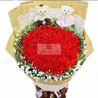 66朵红色康乃馨,福寿安康大岗之傲花店