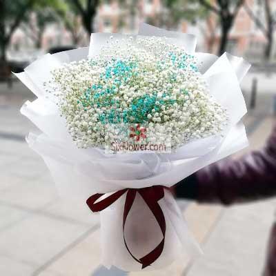天津百合鲜花店1扎白色满天星,有你余生更美丽