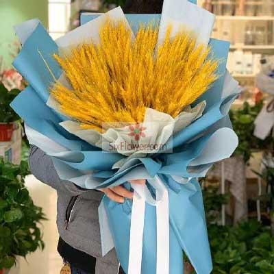 一大把麦穗,衷心的祝愿仁和花卉