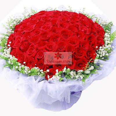方圆鲜花99朵红玫瑰,与你分享一切