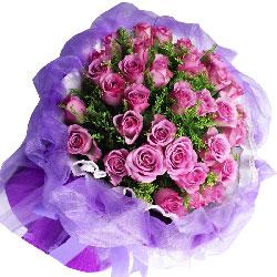 33朵紫玫瑰,思念远方