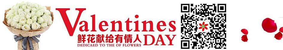 情人节网上订花