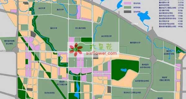 重庆市大学城花店