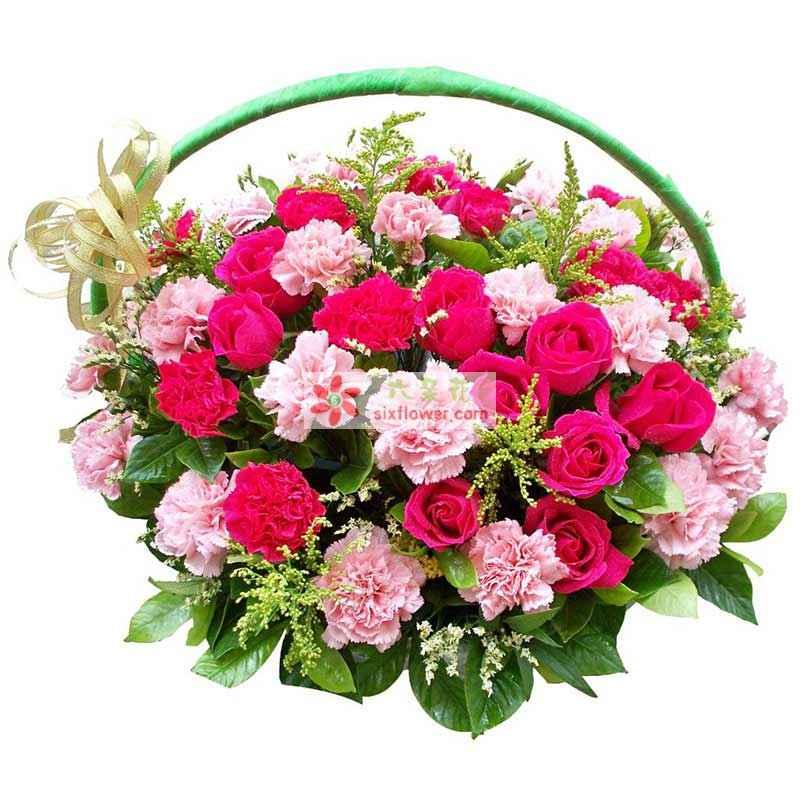红玫瑰18朵,粉色康乃馨36支,红色康乃馨12支
