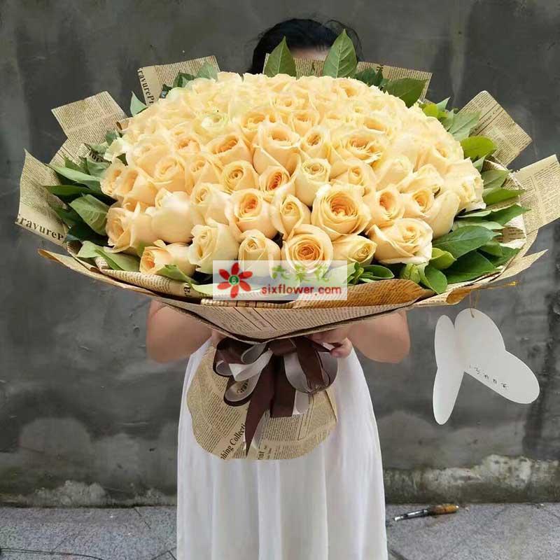 66枝香槟玫瑰,橛子叶周围丰满