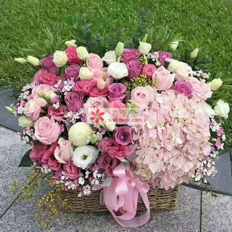 粉色玫瑰30枝、紫色玫瑰30枝,桔梗若干,粉色绣球花一只,相思梅、黄英搭配