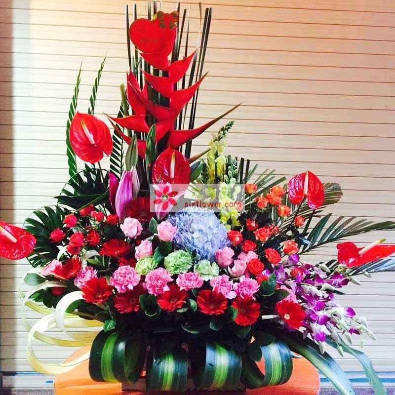 2只富贵年、5枝红掌、16枝扶朗、16枝粉色康乃馨、1只蓝色绣球花、1枝粉色多头百合,红色多头康乃馨、桔梗、洋兰等搭配
