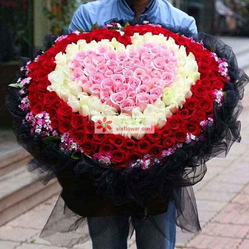 59枝戴安娜玫瑰,55枝白玫瑰,85枝红色玫瑰,周围相思梅点缀