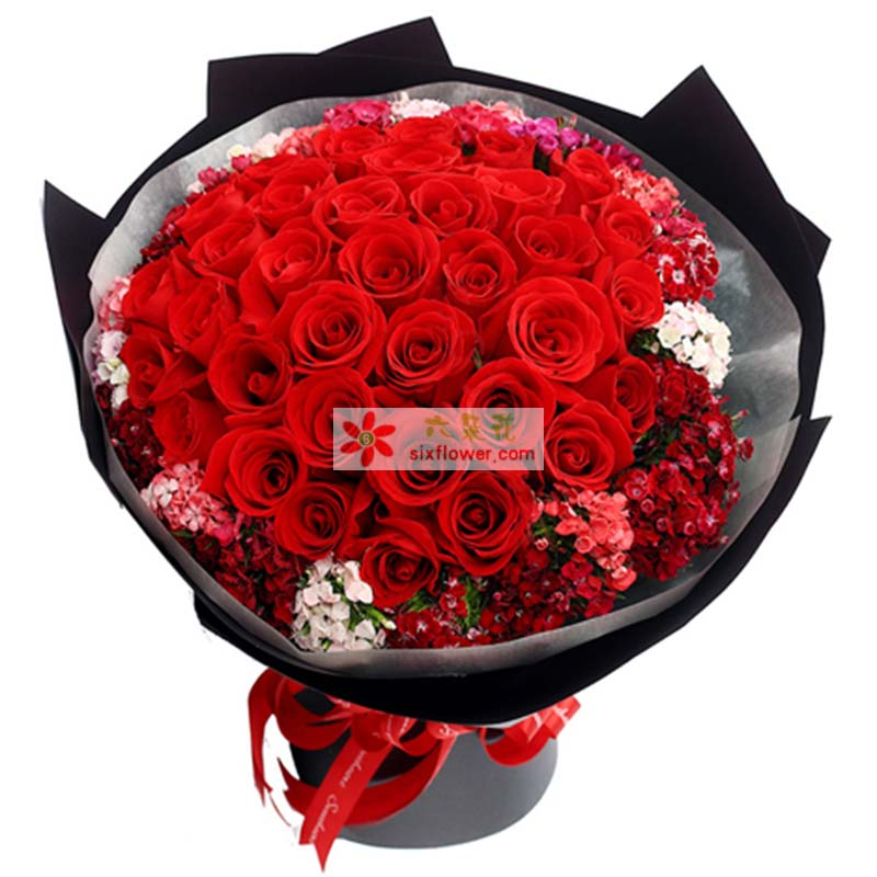 33枝优选红玫瑰,外围相思梅丰满