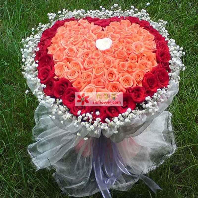 33枝红玫瑰,65枝粉玫瑰,1枝白玫瑰,满天星外围搭配