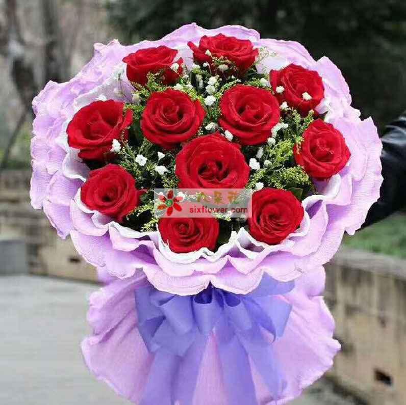 11枝红色玫瑰,黄英、满天星丰满