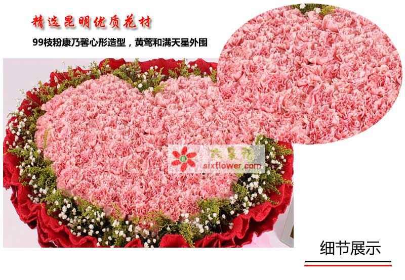 99枝粉康乃馨心形造型,优质加拿大大黄莺和满天星外围