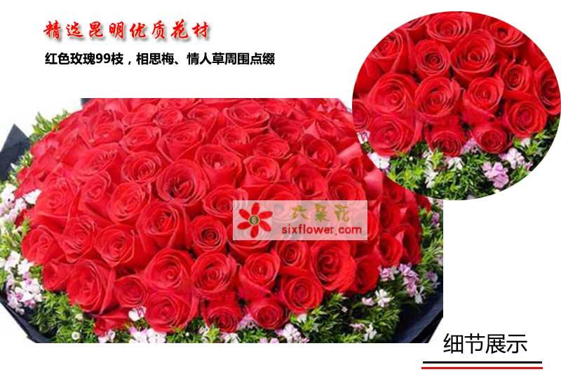 超级红玫瑰99枝,相思梅,情人草周围点缀