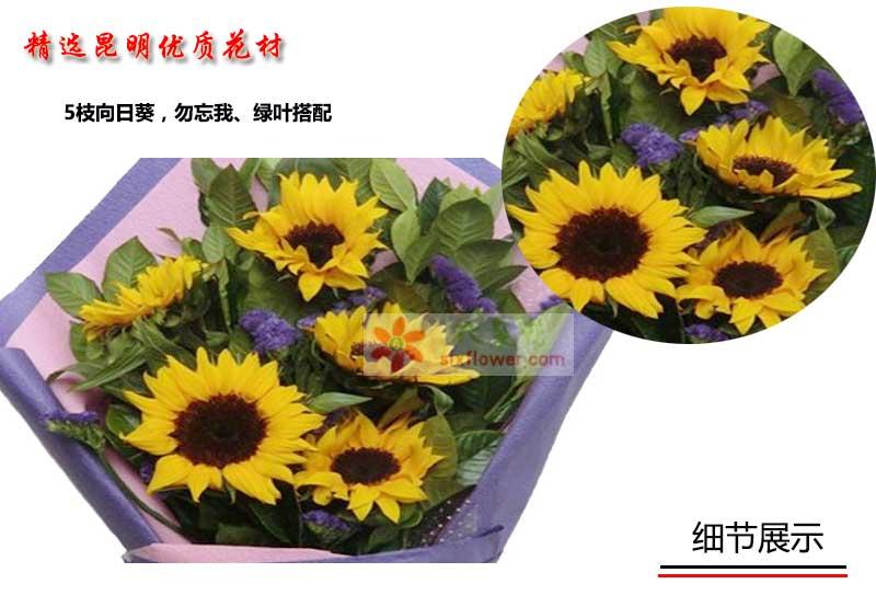 5枝向日葵,勿忘我、绿叶搭配;