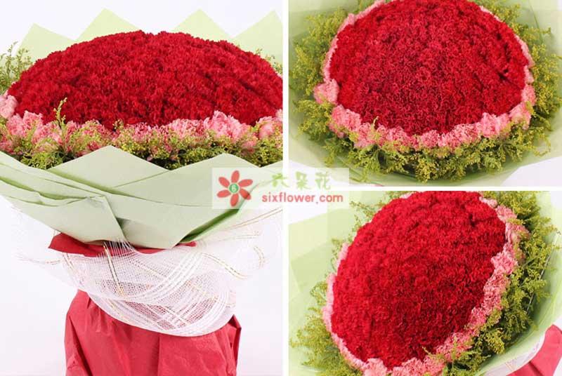 66朵红色康乃馨加33朵粉色康乃馨,加拿大黄莺搭配;